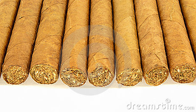 Row of cuban cigars