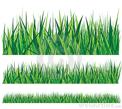 Row of grass