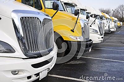 Row of large trucks