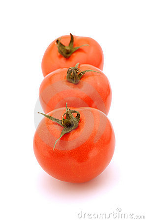 Free Row Of Tomato Stock Images - 9136414