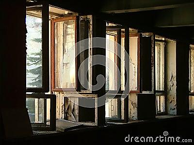 Row of open windows
