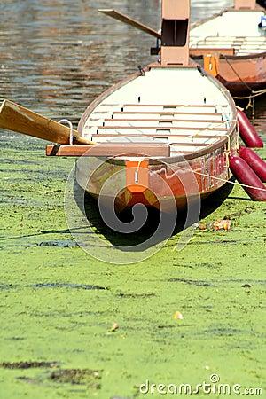 Row on Pollution