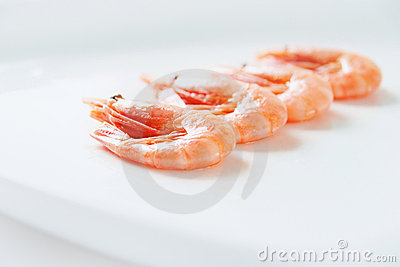 Row of shrimps