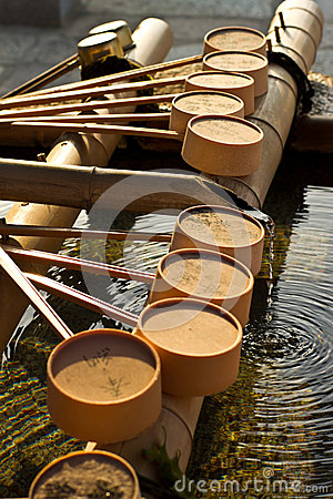 Row of purification dipper