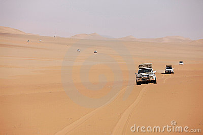 Row of white cars in desert