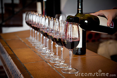 row of wine glasses for tasting
