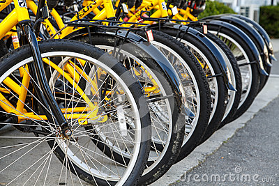 Row of Yellow Bicycles