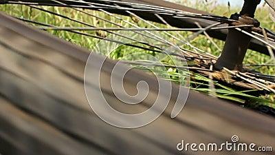 Roweru górskiego trzask - wirować tylni koło zbiory