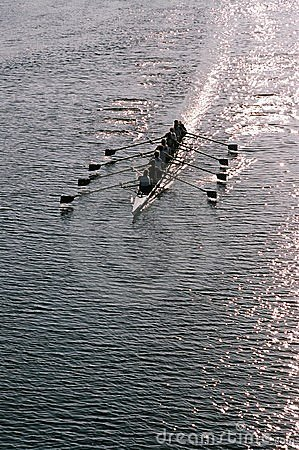 Free Rowing Team Royalty Free Stock Photography - 4218387