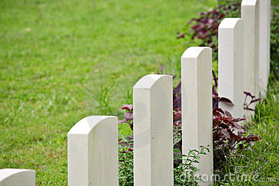 Rows of headstone