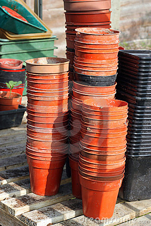 Rows of plant pots in Greenhouse.