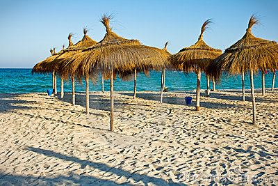 Rows of the sunshade on the beach
