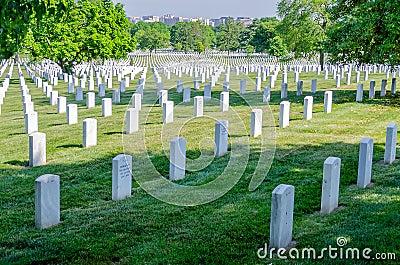 Rows of White Grave Stones Editorial Stock Photo