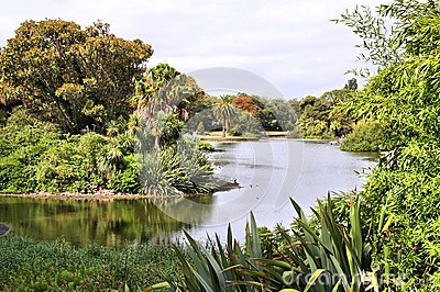 Royal Botanic Gardens Melbourne Stock Photo Image 50083514