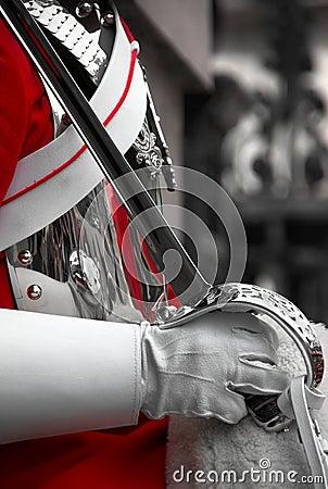 Royal Horse Guard, London