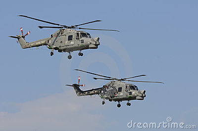 Royal Navy Black Cats Editorial Image