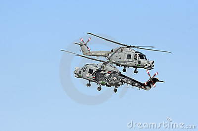 Royal Navy Black Cats Editorial Stock Photo