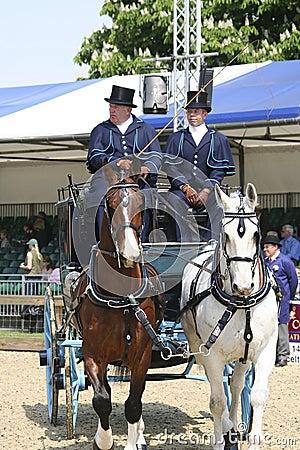 Royal Windsor Horse Show Editorial Image