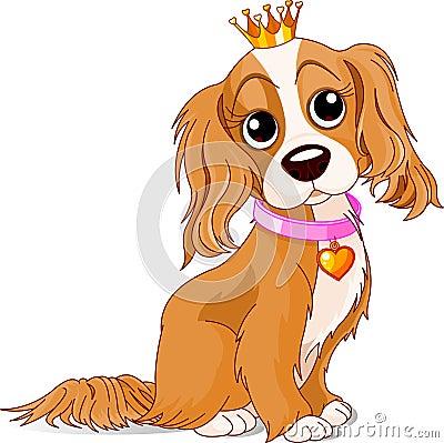 Royalty dog