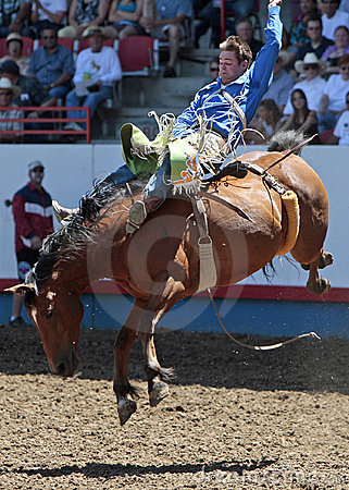Royce Ford at the Greeley Stampede (Editorial) Editorial Stock Photo