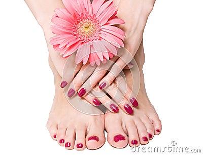 Roze manicure, pedicure en bloem