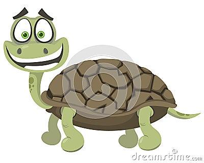 Rozochocony żółw