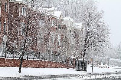 Rua do inverno em Fairfax
