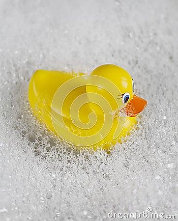 Rubber Ducky bathtime