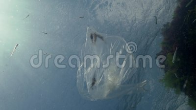 Rubbish in the water, Polyethylene bag kills marine animals, shrimps die. Ecology of nature, plastic. Black Sea, Ukraine stock footage