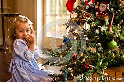 Ruborización sobre el árbol de navidad
