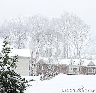 Rue de l hiver