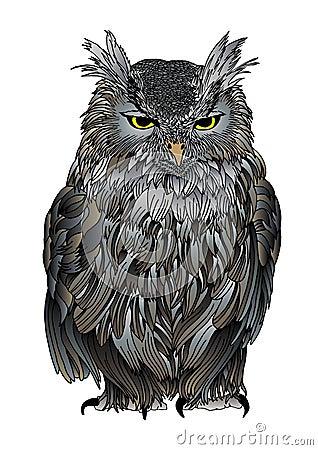Ruffled old owl