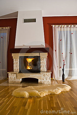 Rug and fireplace