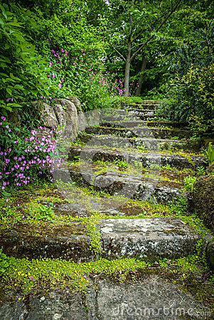 Rugged Garden Steps