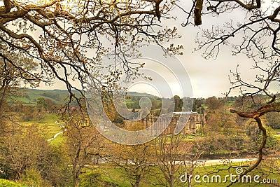 Ruin of Bolton Abbey.