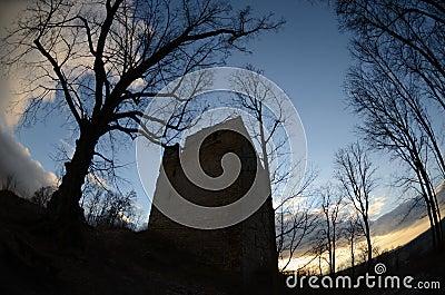 Ruin castle straufhain