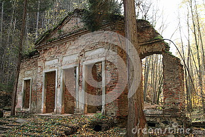 Ruin in forest Stock Photo