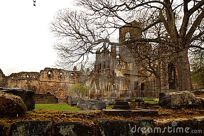 Ruin of Kirkstall Abbey