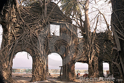 Ruin and the Roots
