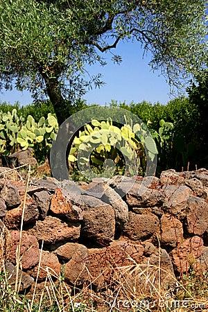 Ruin Sardinia