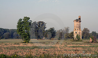 Ruined house in a field