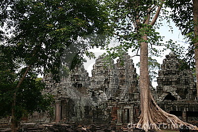 Ruins of ancient temple and giant tree roots