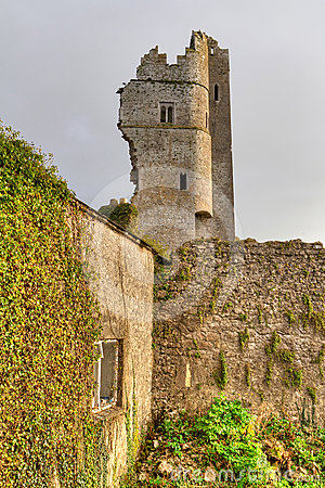 Ruins of the castle in Askeaton