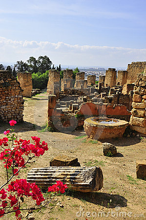 Ruins of the old city of Carthage, Tunisia