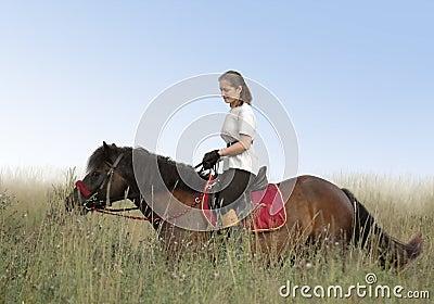 Ruiter en paard