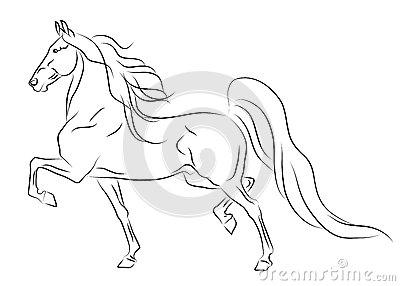 Running American Saddlebred horse sketch