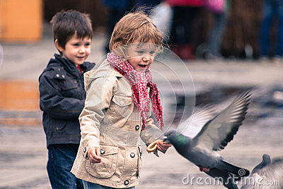Running around and chasing birds Editorial Stock Image