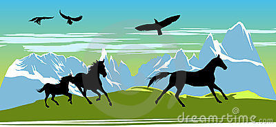 Running black horses on the mountains
