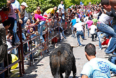 Running with the Bull in Arcos de la Frontera Editorial Photography