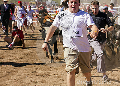 Running of the Bulls in America in Arizona Editorial Photo